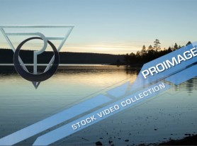 Proimages Stock Video Collection
